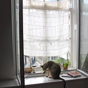 床の間のような窓_b0199526_2481931.jpg