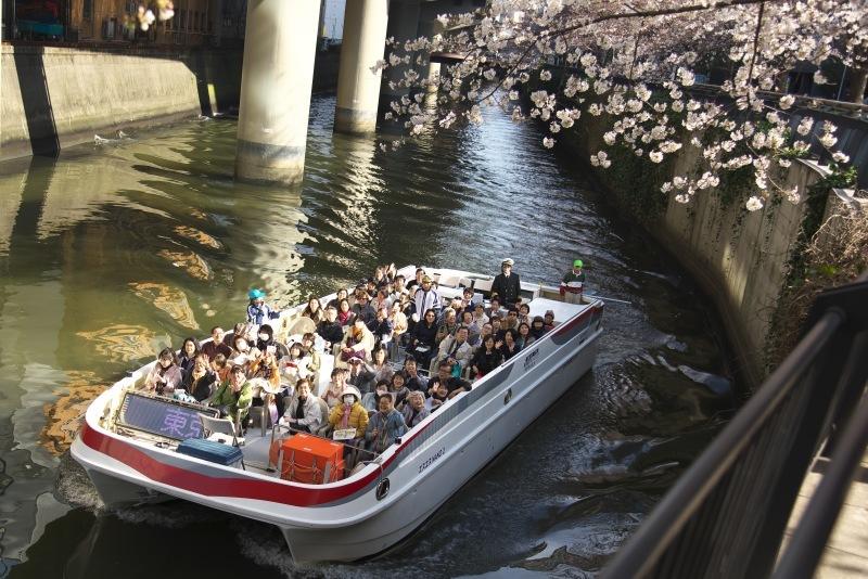 SAKURA  ・・・都心の桜・・・_f0333031_20535593.jpg