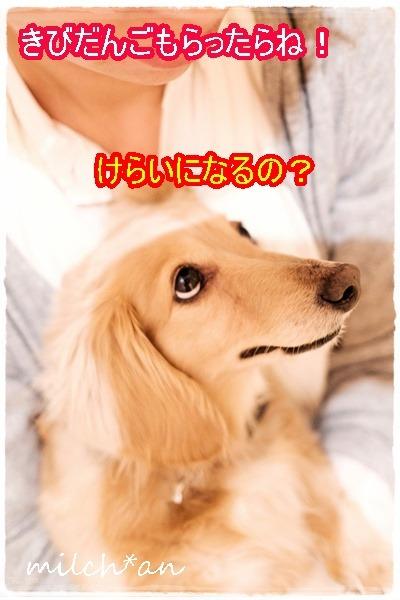 b0115642_2150663.jpg