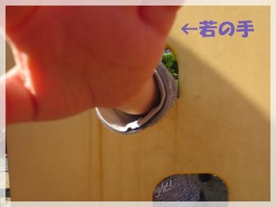 b0254145_15532011.jpg