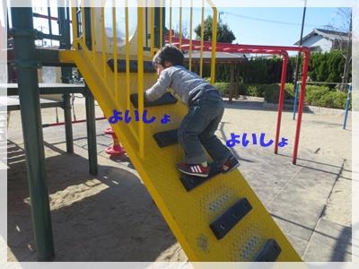 b0254145_1557782.jpg