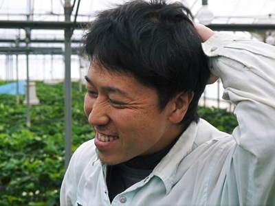 熊本イチゴ『さがほのか』 ビニールを曇らせて日焼けを防ぎ、高品質のイチゴを育てます_a0254656_17472245.jpg