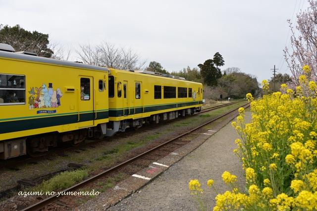 季節の花と電車好きなら、「春風と走る菜の花&ムーミン電車を見に行こう!」