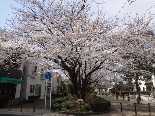 鎌倉(初日)_f0148927_17474888.jpg