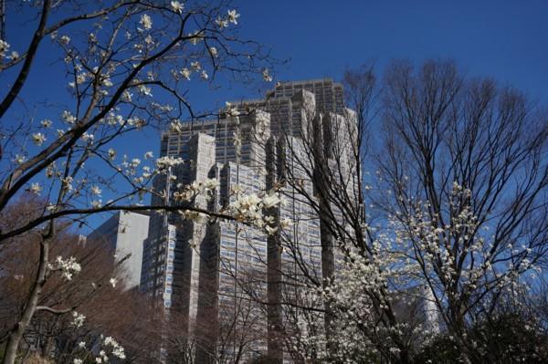 超高層ビル街の春_f0055131_9141018.jpg