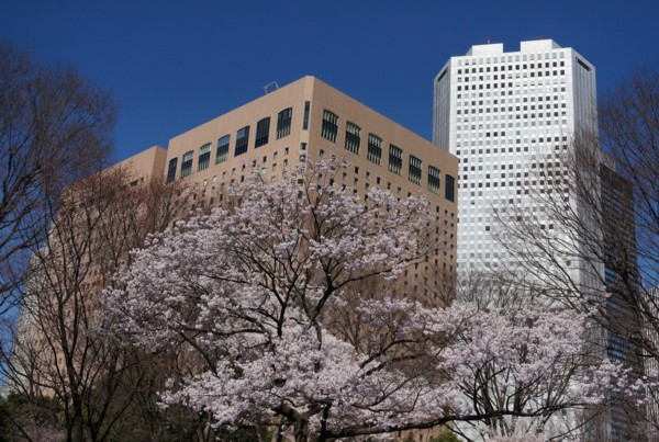 超高層ビル街の春_f0055131_9141652.jpg