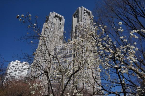 超高層ビル街の春_f0055131_914323.jpg