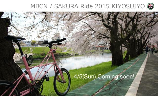 夜桜☆ナイトラン 2015_b0078651_12445131.jpg