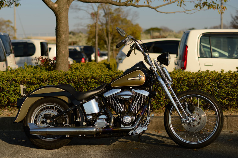 1998 FXSTS CUSToM_c0357452_22221146.jpg