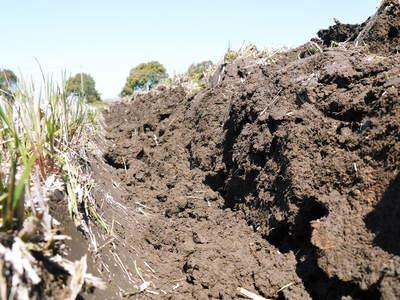 七城米 長尾農園 「天地返し」で深くまで強い根をはる田んぼ作り!_a0254656_19441550.jpg