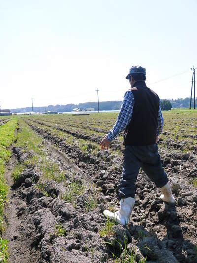 七城米 長尾農園 「天地返し」で深くまで強い根をはる田んぼ作り!_a0254656_19462611.jpg