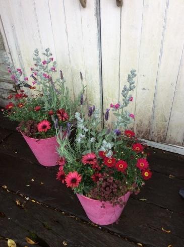 送別のお花が続きます_b0137969_10405487.jpg