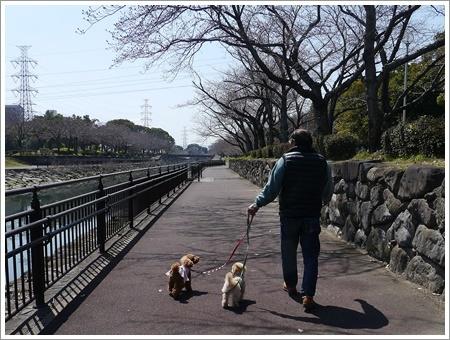 モーニングの後は地元のイベントでお散歩とお買い物\(>∀<)/_b0175688_00543270.jpg