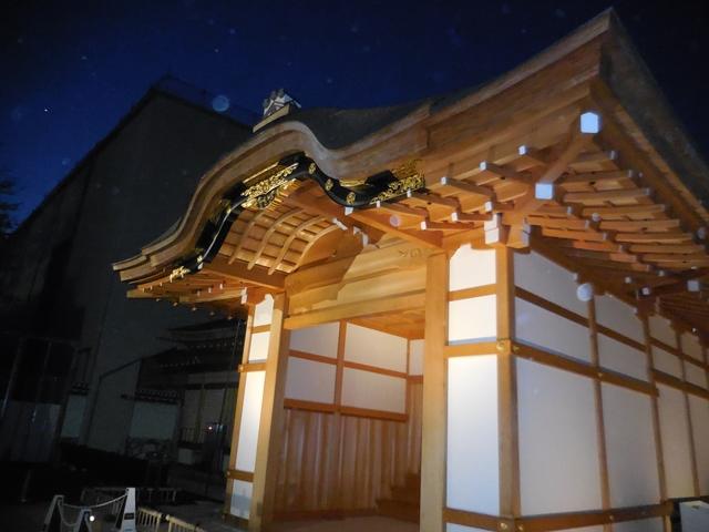 名城公園夜桜_d0251191_1431566.jpg