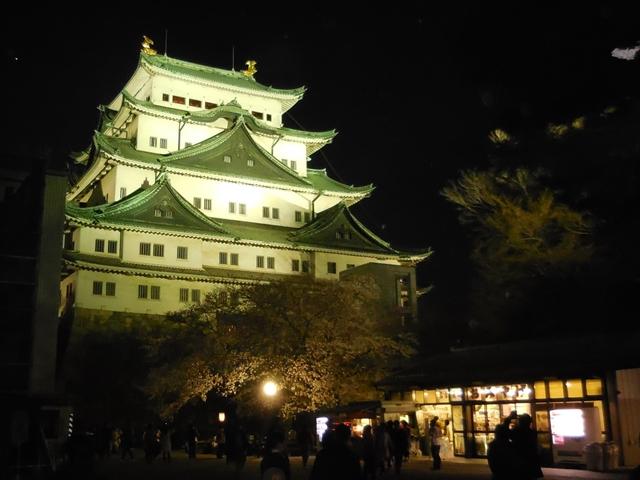 名城公園夜桜_d0251191_1435019.jpg