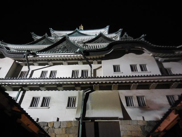 名城公園夜桜_d0251191_14352742.jpg