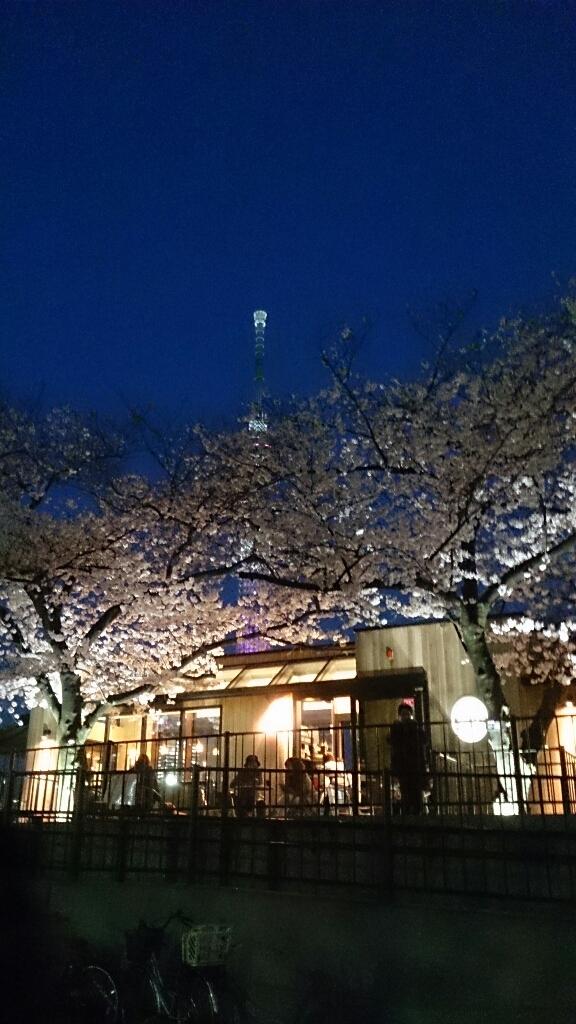 夜桜@隅田公園_e0219520_21323987.jpg