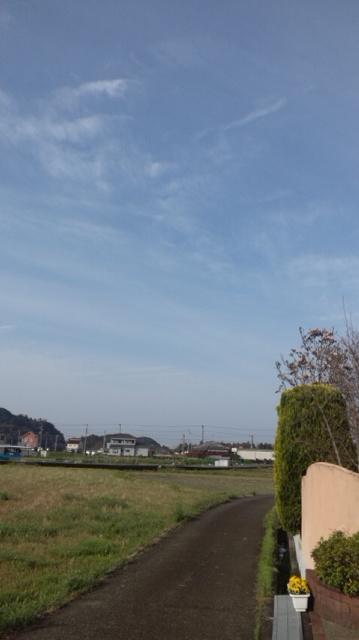 いい天気になりました_a0093423_845027.jpg