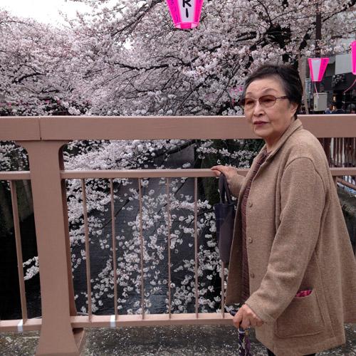 目黒川にお花見に。_a0026127_1482351.jpg
