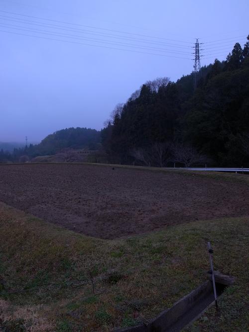 朝の散歩@瑞浪_b0036636_18412133.jpg
