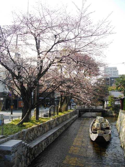 春の一之舟入_e0230141_9101453.jpg