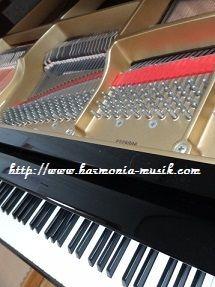 ピアノ教室☆勉強会テーマ_d0165645_16174535.jpg