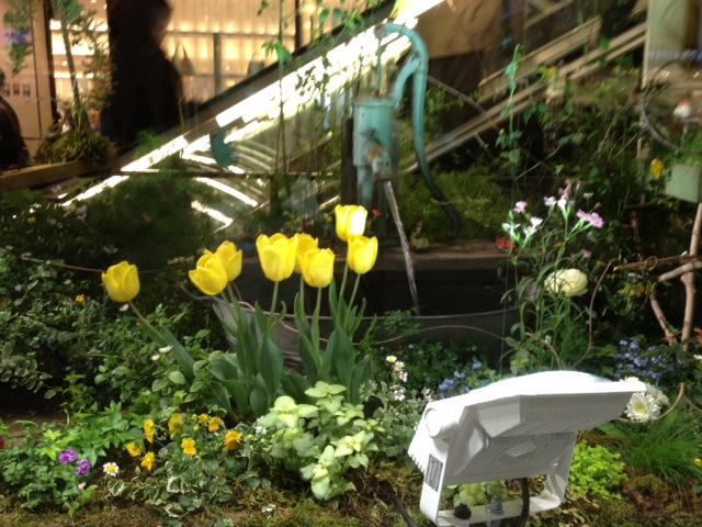 春のガーデン_f0204295_15401221.jpg