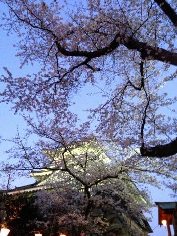 夜桜散歩_c0203401_15132972.jpg