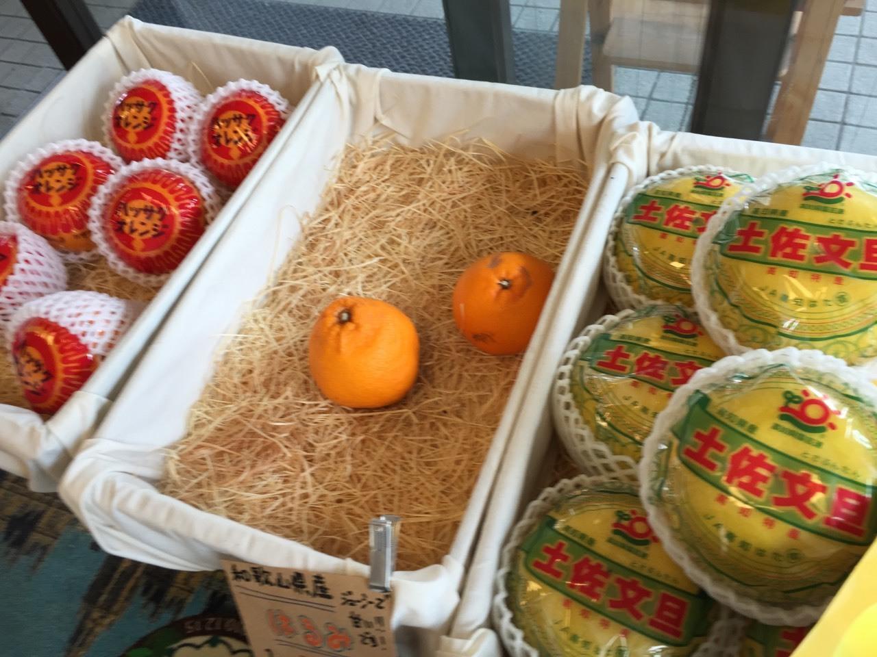 fruit cafe  FELIZ_e0115904_10482581.jpg