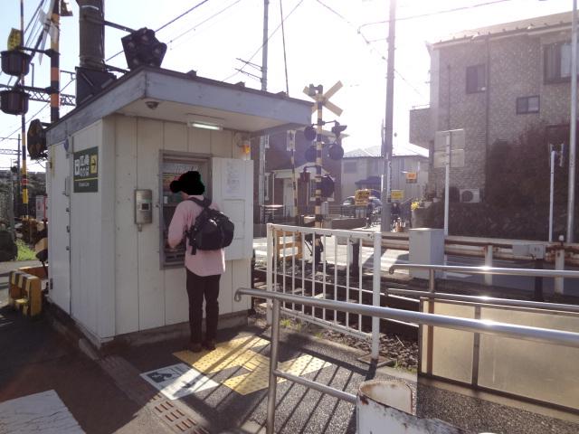 鎌倉(T-SITE)_f0148927_19542760.jpg