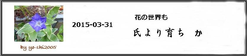 e0033229_20133391.jpg