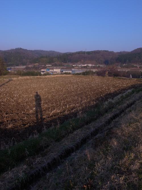 朝の散歩@瑞浪_b0036636_1905893.jpg