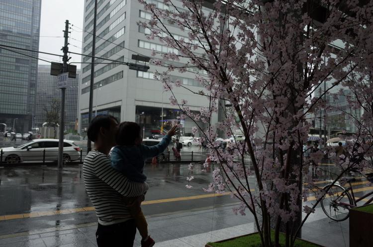 雨の日曜日は。_f0281446_07463955.jpg