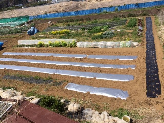 堆肥の攪拌と畑への運び入れ _c0222448_12294168.jpg