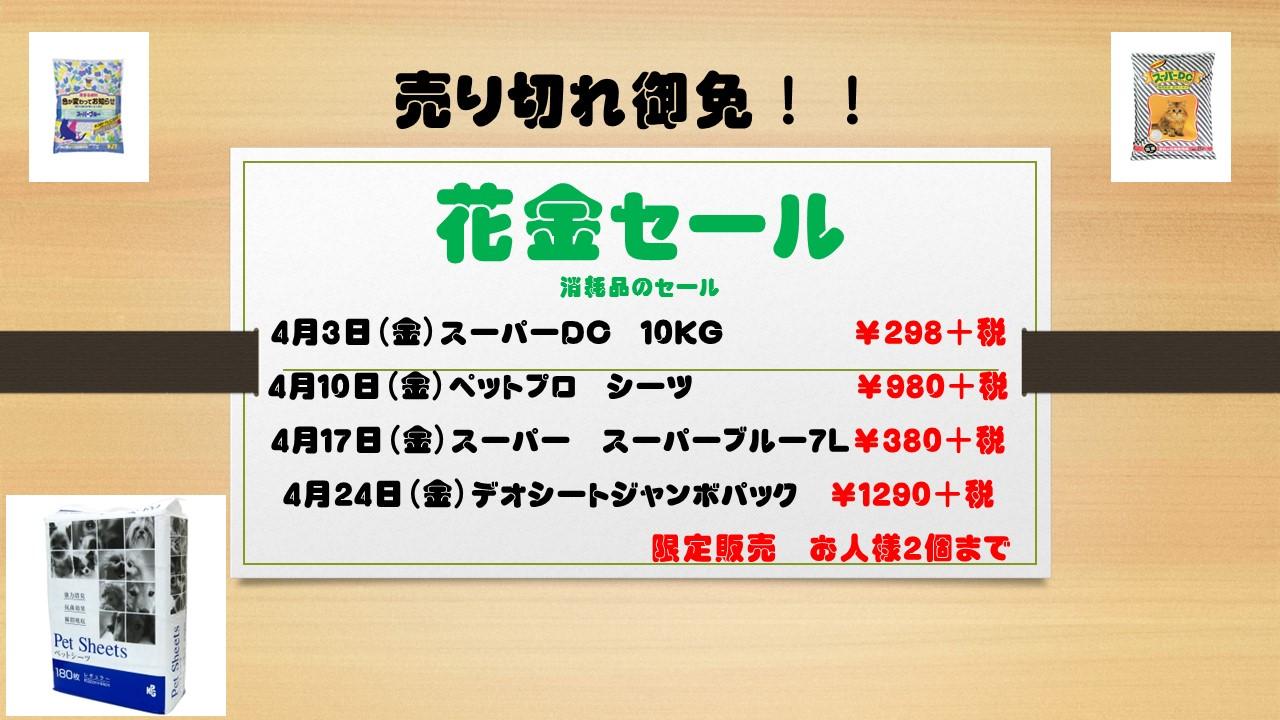 150331 花金セール_e0181866_146030.jpg