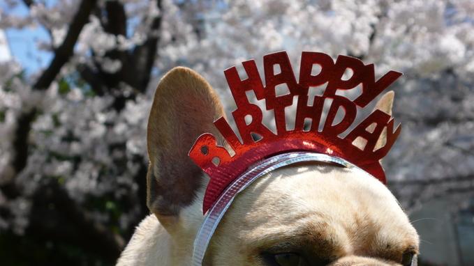 Happy Birthday! 8th._f0143269_12555973.jpg