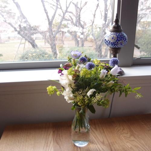 尊敬すべき方とお花見冷え取りファッション15 3/31_c0342582_23501736.jpg