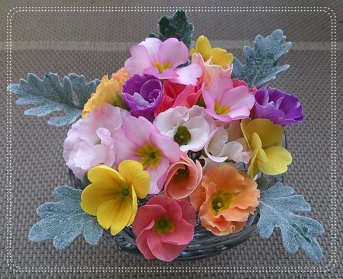 4月の花_e0289203_14351163.jpg