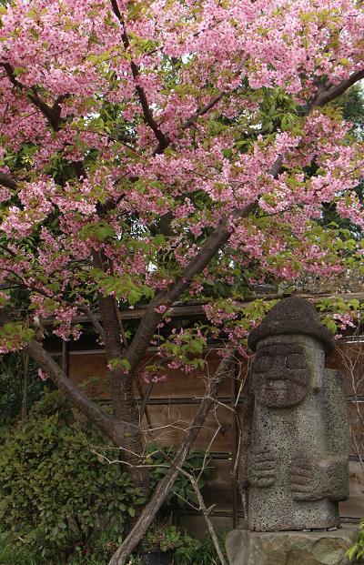 春と共に、パチンコ屋通いは終わり_d0150720_189525.jpg