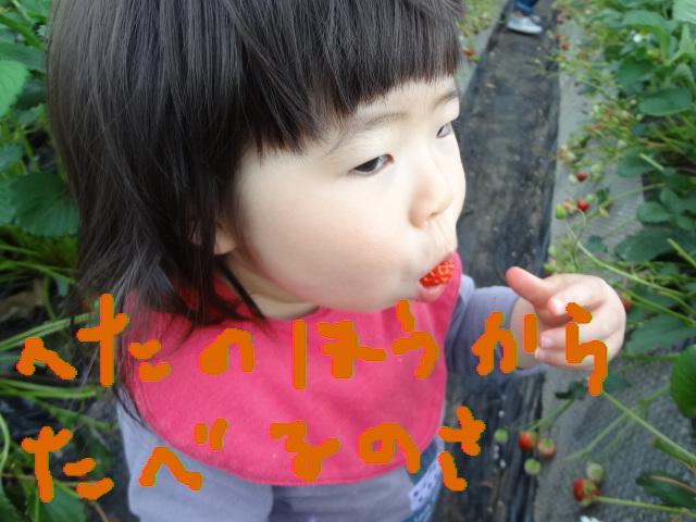 f0148927_19552176.jpg