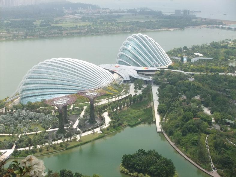 シンガポール研修_a0147436_11122797.jpg