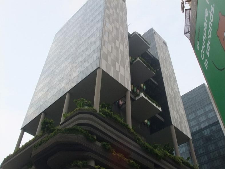 シンガポール研修_a0147436_11143131.jpg