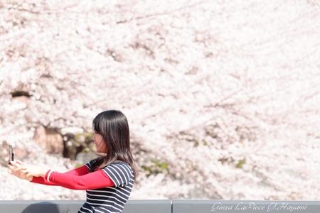 花のある風景 ソメイヨシノの季節_b0133053_0315716.jpg