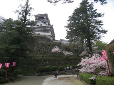 高知城の桜_f0006356_17573768.jpg