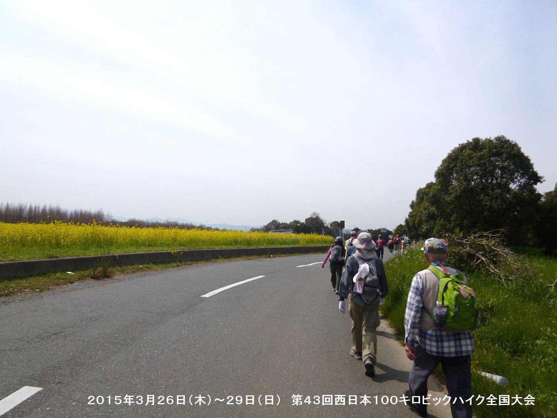 第43回西日本100キロビックハイク全国大会ー1_b0220064_12561143.jpg