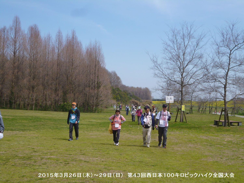第43回西日本100キロビックハイク全国大会ー1_b0220064_13102819.jpg