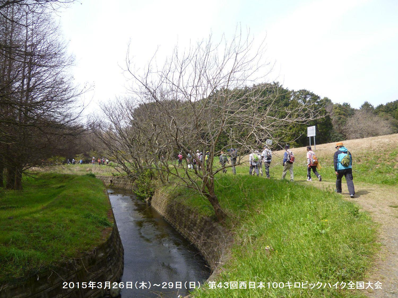第43回西日本100キロビックハイク全国大会ー1_b0220064_1374369.jpg