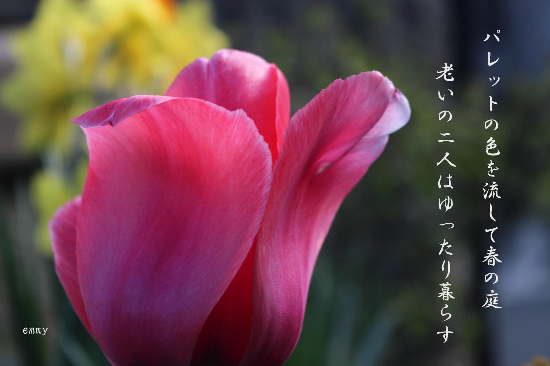 d0108506_20122574.jpg