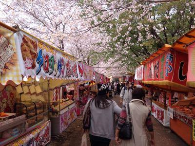 桜_a0300410_21335766.jpg