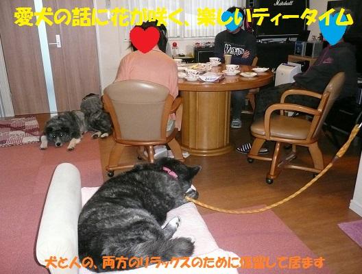 f0121712_16232887.jpg